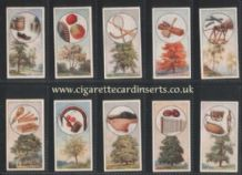 Tobacco cards Cigarette cards British Trees & their Use